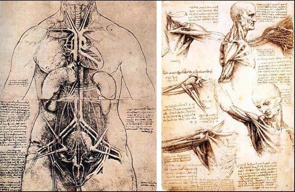 Foto: facebook.com/ Leonardo da Vinci