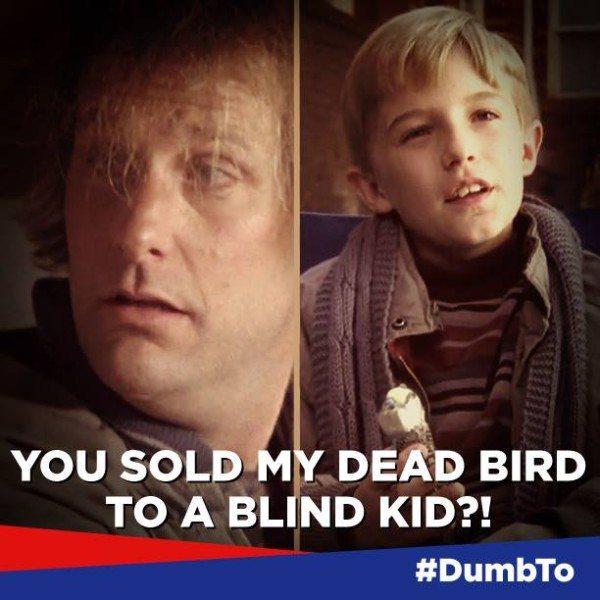 Foto:Facebook.com/DumbandDumberMovie