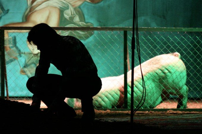 Foto: www.ivicabuljan.com/predstave/2007/svinjak